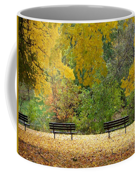 Fall Coffee Mug featuring the photograph Fall Series 12 by Anita Burgermeister
