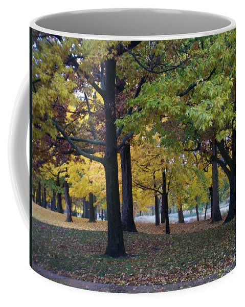 Fall Coffee Mug featuring the photograph Fall Series 14 by Anita Burgermeister