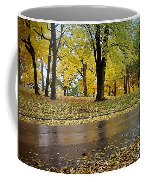 Fall Coffee Mug featuring the photograph Fall Series 15 by Anita Burgermeister