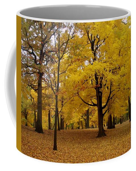 Fall Coffee Mug featuring the photograph Fall Series 5 by Anita Burgermeister