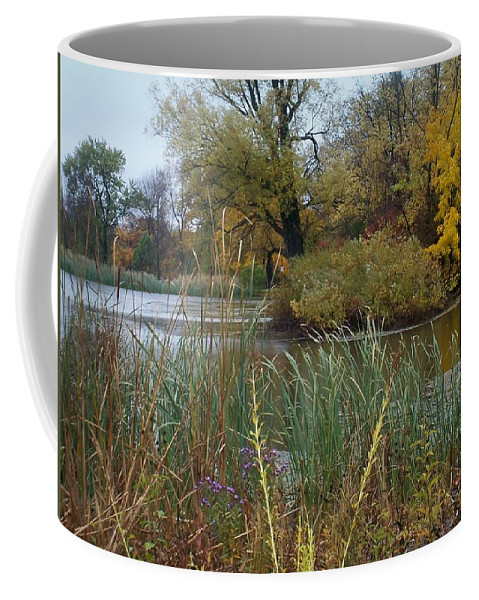 Fall Coffee Mug featuring the photograph Fall Series 7 by Anita Burgermeister