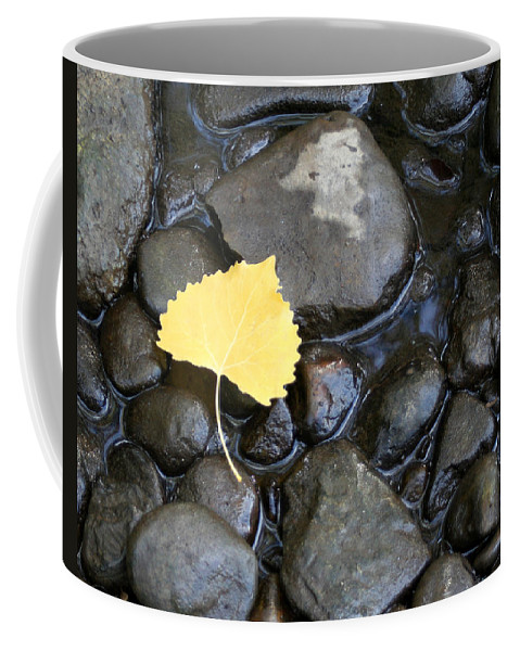 Fall Coffee Mug featuring the photograph Fall Simplicity by Melanie Rainey
