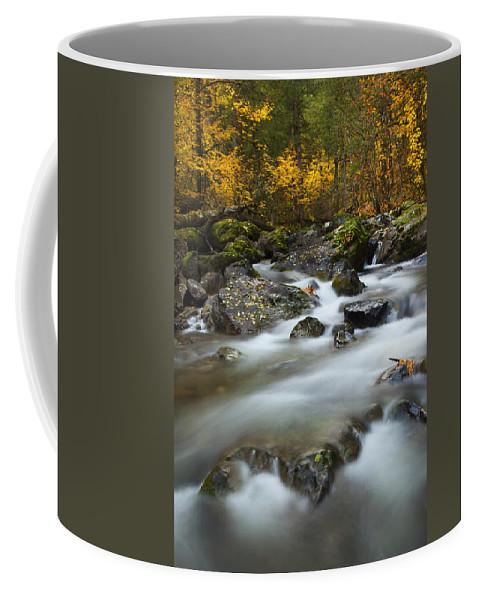 Stream Coffee Mug featuring the photograph Fall Surge by Mike Dawson