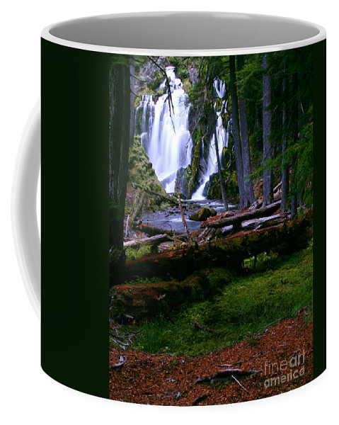 Waterfall Coffee Mug featuring the photograph Fall Through by Peter Piatt