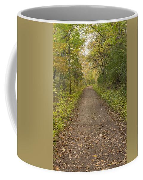 Trail Coffee Mug featuring the photograph Fall Trail Scene 48 by John Brueske