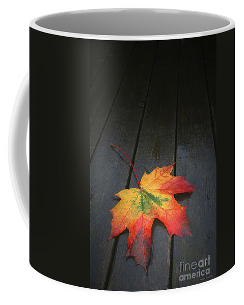 Leaf Autumn Fall Rain Color Coffee Mug featuring the photograph Fall by Winston Rockwell