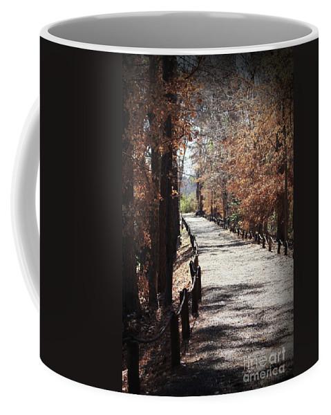 Fall Foliage Coffee Mug featuring the photograph Fall Wonder Land by Kim Henderson