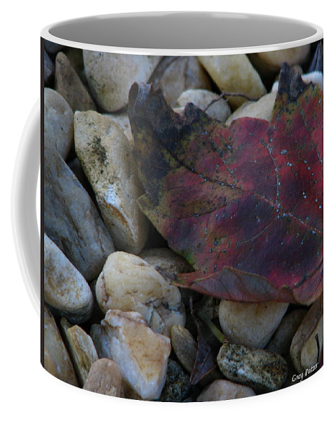 Patzer Coffee Mug featuring the photograph Fallen by Greg Patzer
