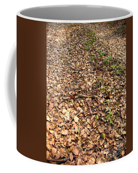 Path Coffee Mug featuring the photograph Fallen Leaves by Yali Shi