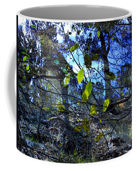 Leaves Coffee Mug featuring the photograph Falling Leaves by Kelly Jade King