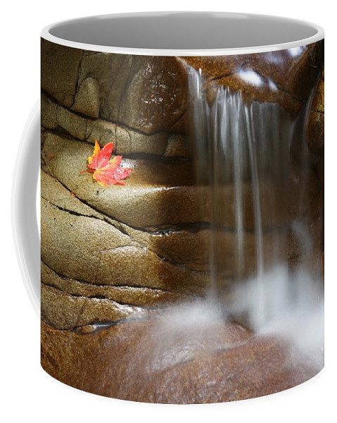 Stream Coffee Mug featuring the photograph Falling Water by Winston Rockwell