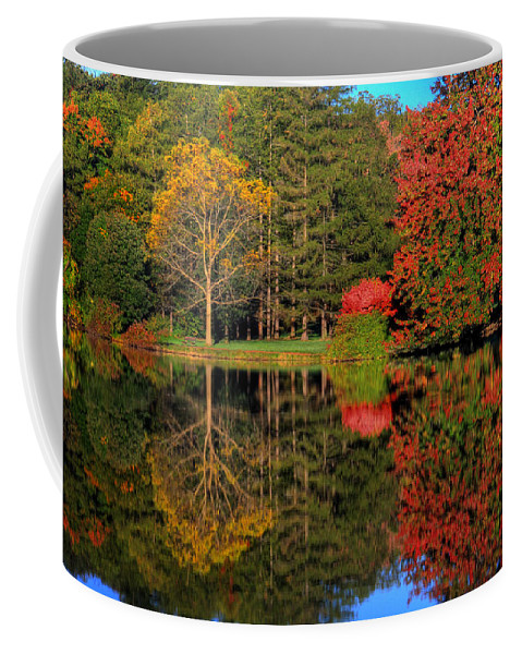 Fall Coffee Mug featuring the photograph Falloneous Assault by John Absher