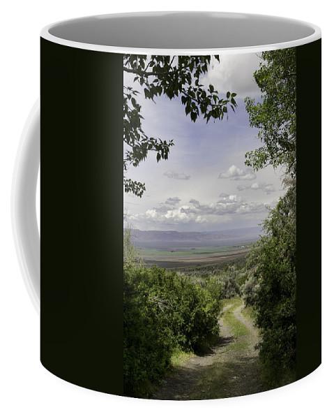 Desert Coffee Mug featuring the photograph Falls Canyon Exit 2 by Karen W Meyer