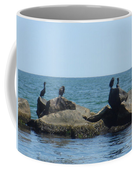 Birds Coffee Mug featuring the photograph Falmouth by Donna Walsh