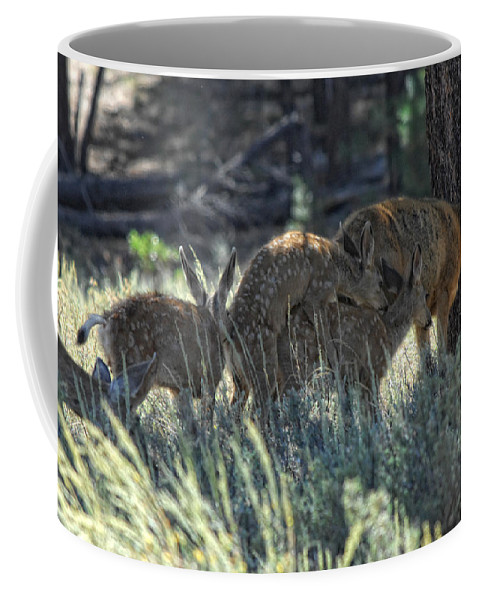 Deer Coffee Mug featuring the photograph Family Values by Donna Blackhall