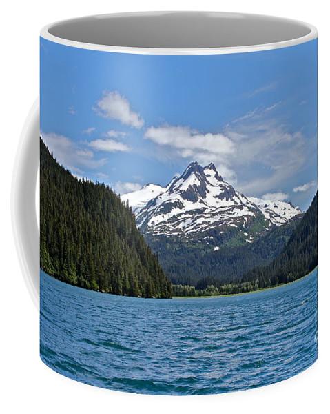 Bay Coffee Mug featuring the photograph Far Reaches by Rick Monyahan