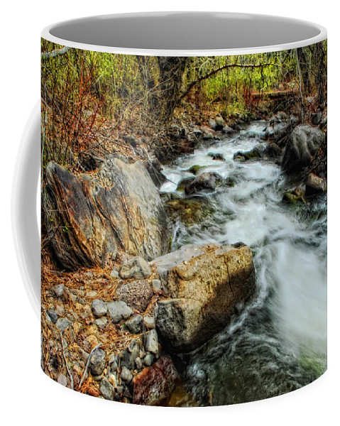 Creek Coffee Mug featuring the photograph Fast Forward by Donna Blackhall