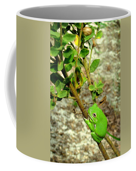 Nature Coffee Mug featuring the photograph Fat Frog by Peg Urban