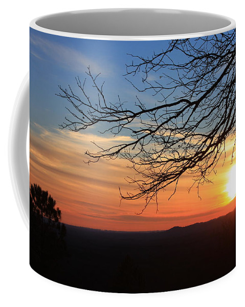 Coffee Mug featuring the photograph Fdr Satet Park Ga by Mountains to the Sea Photo