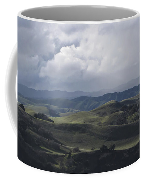 Landscape Coffee Mug featuring the photograph February Rain Storm by Karen W Meyer