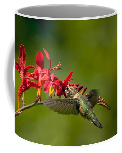 Floral Coffee Mug featuring the photograph Feeding Hummer by Randall Ingalls