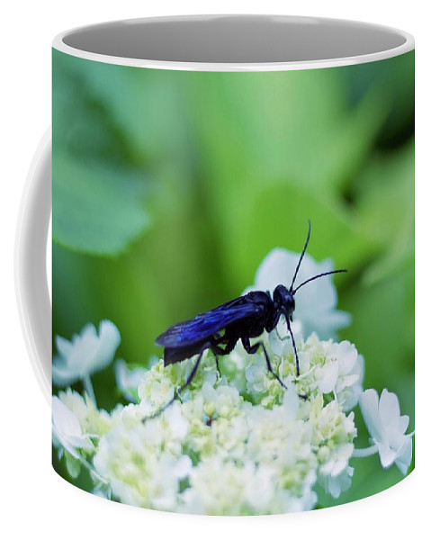 Bug Coffee Mug featuring the photograph Feeding Insect by Drew Werner
