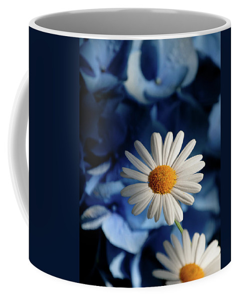 Daiy Coffee Mug featuring the photograph Feeling Blue Daisies by Trish Tritz