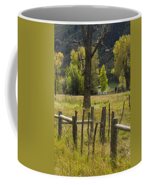 Colorado Photographs Coffee Mug featuring the photograph Fence Posts by Gary Benson