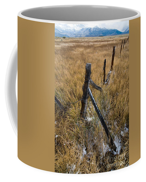 Landscapes Coffee Mug featuring the photograph Fence To Nowhere by Norman Andrus