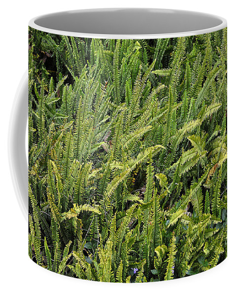 Clay Coffee Mug featuring the photograph Fern by Clayton Bruster