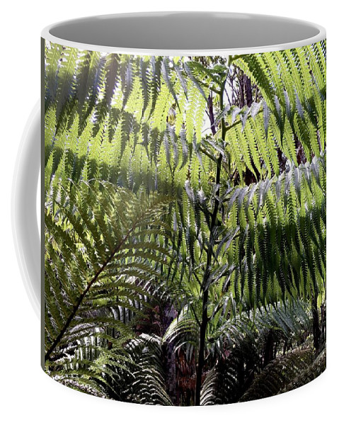 Fern Curtain Rainforest Hawaii Big Island Nature Flora Forest Rain Green Coffee Mug featuring the photograph Fern Curtain by Russell Keating
