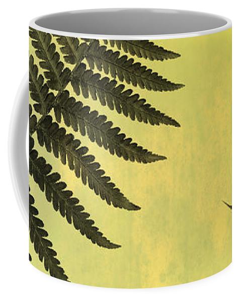Fern Coffee Mug featuring the photograph Fern Leaves 2 by Mark Rogan