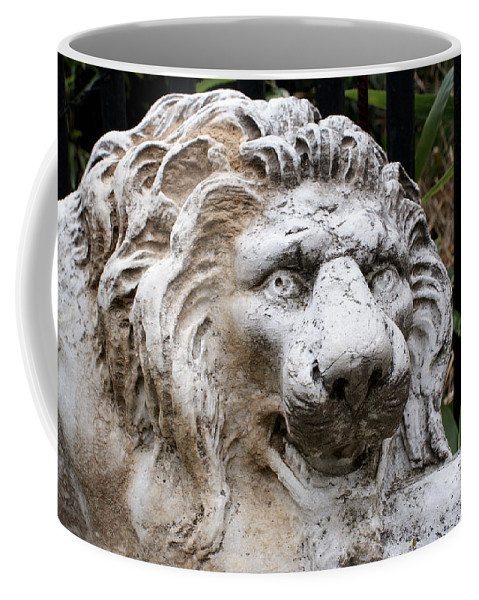 Lion Coffee Mug featuring the photograph Ferocious by Jean Haynes