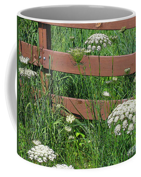 Flower Coffee Mug featuring the photograph Field Of Lace by Ann Horn
