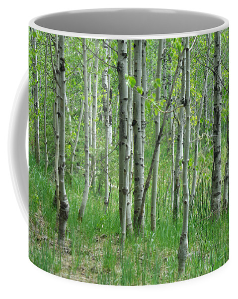 Tree Coffee Mug featuring the photograph Field Of Teens by Donna Blackhall
