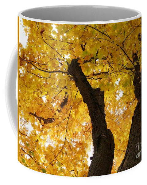 Foliage Coffee Mug featuring the photograph Fields Of Gold Above Our Heads by Cheryl Kurman