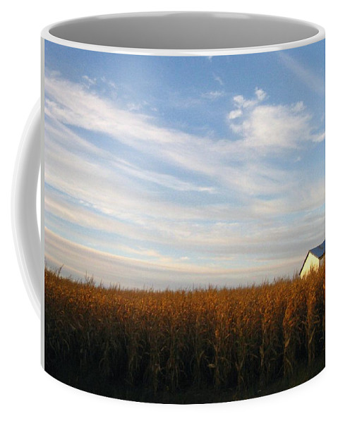 Country Coffee Mug featuring the photograph Fields Of Gold by Rhonda Barrett