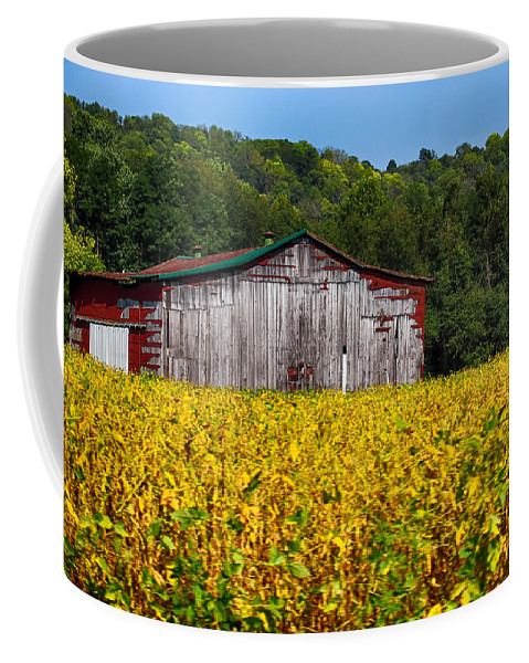 Barn Coffee Mug featuring the photograph Fields Of Gold by Tammy Sullivan