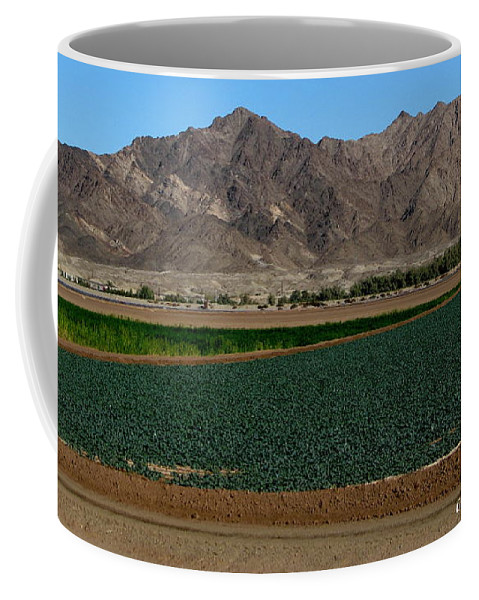 Patzer Coffee Mug featuring the photograph Fields Of Yuma by Greg Patzer