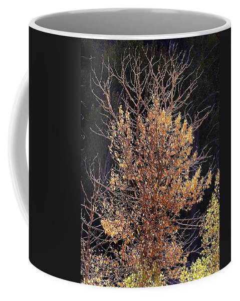 California Scenes Coffee Mug featuring the photograph Final Fall by Norman Andrus
