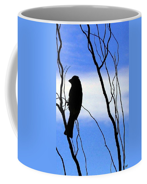 Finch Coffee Mug featuring the photograph Finch Silhouette 2 by Will Borden