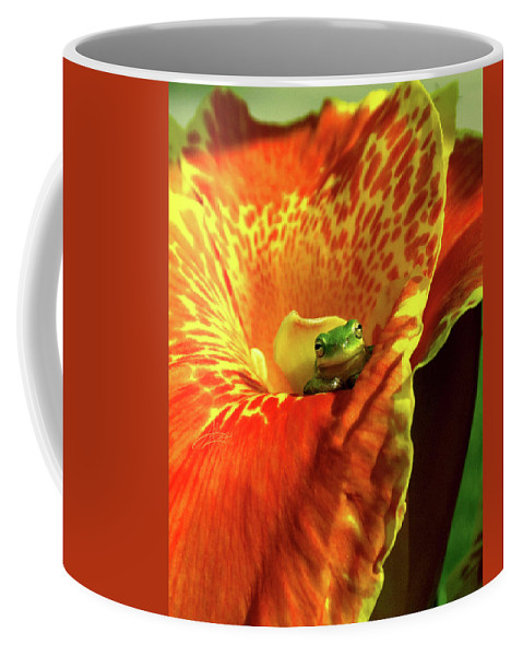 Frog Coffee Mug featuring the photograph Find Your Happy Place by April Zaidi
