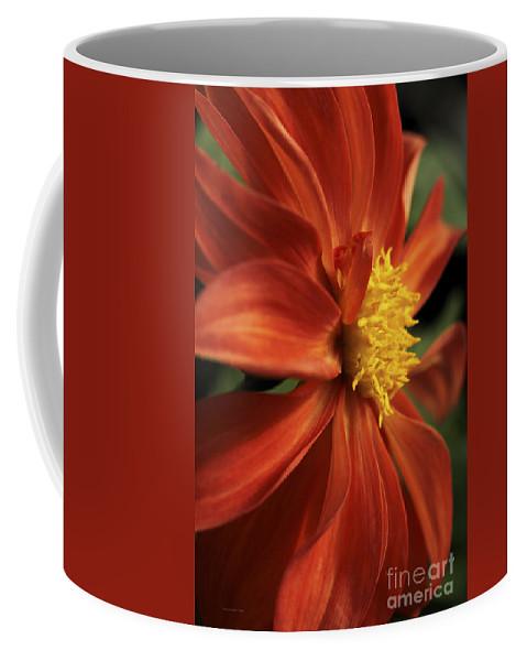Flower Coffee Mug featuring the photograph Fire Dahlia by Deborah Benoit