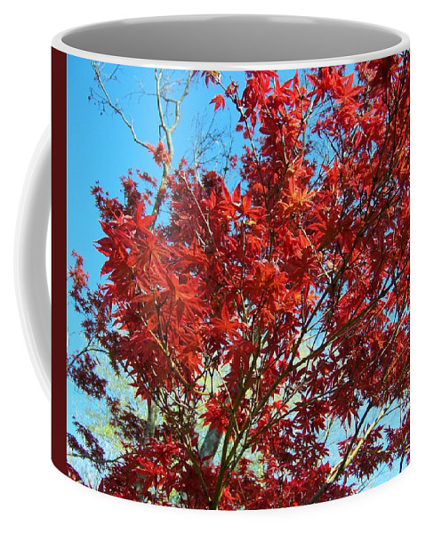 Red Coffee Mug featuring the photograph Fire Tree I by Jai Johnson