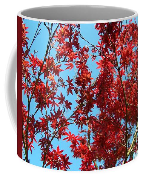 Red Coffee Mug featuring the photograph Fire Tree II by Jai Johnson