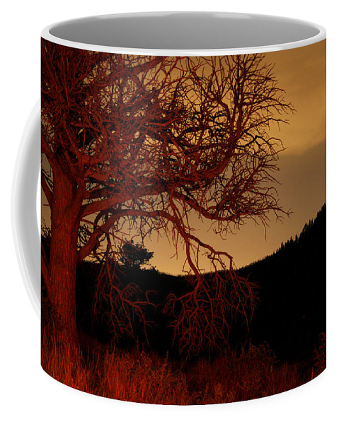 Landscape Coffee Mug featuring the photograph Fire Tree by Jeffery Ball