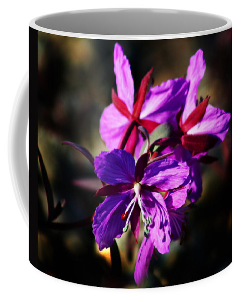 Fireweed Coffee Mug featuring the photograph Fireweed by Anthony Jones