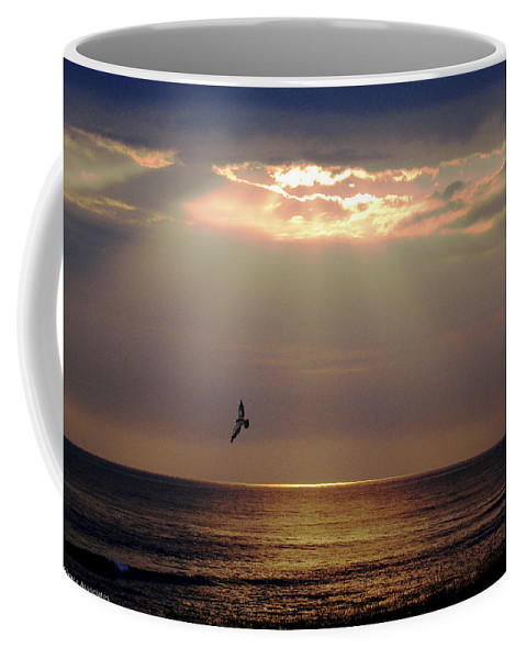 Ocean Coffee Mug featuring the photograph First Flight by Ches Black