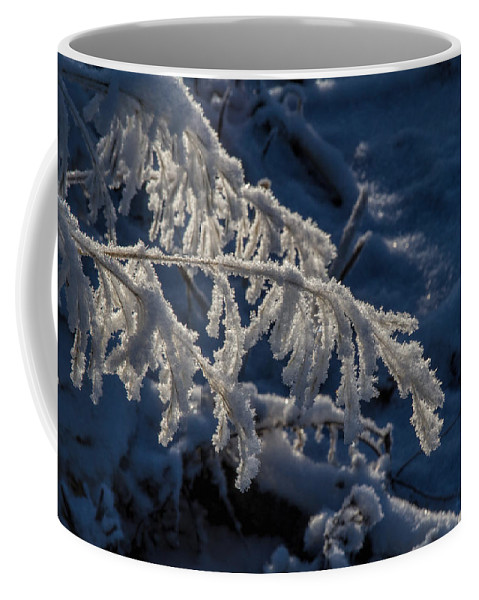 Frost Coffee Mug featuring the photograph First Light by Alana Thrower