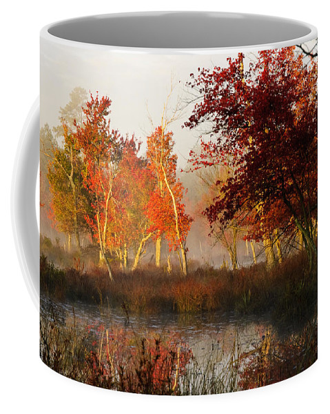 Landscape Coffee Mug featuring the photograph First Light At The Pine Barrens by Louis Dallara